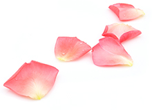 petale de rose vermouth dry